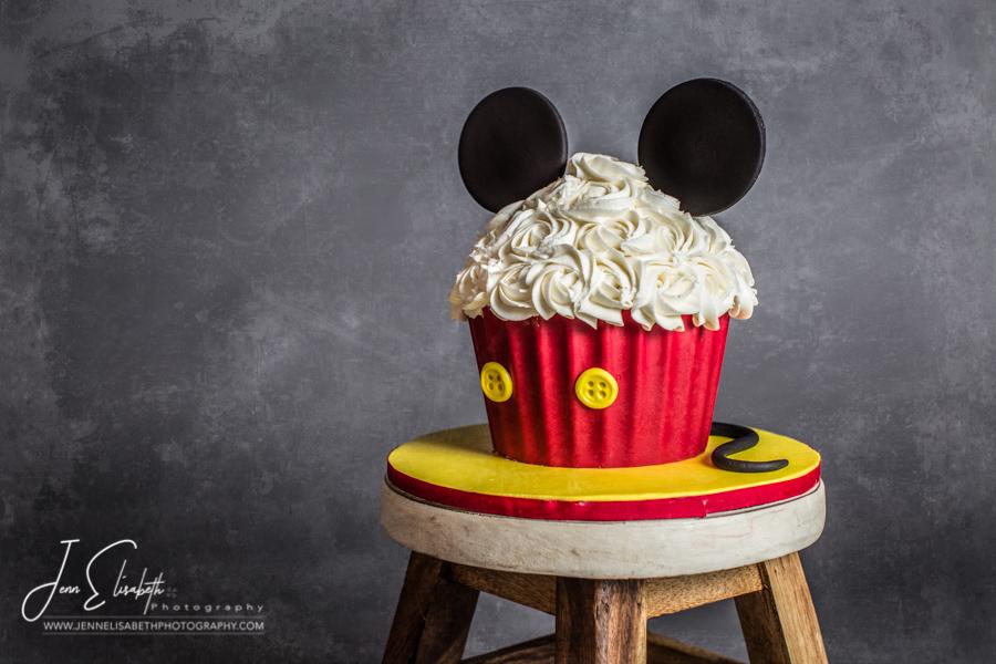 Cake Smash Portraits