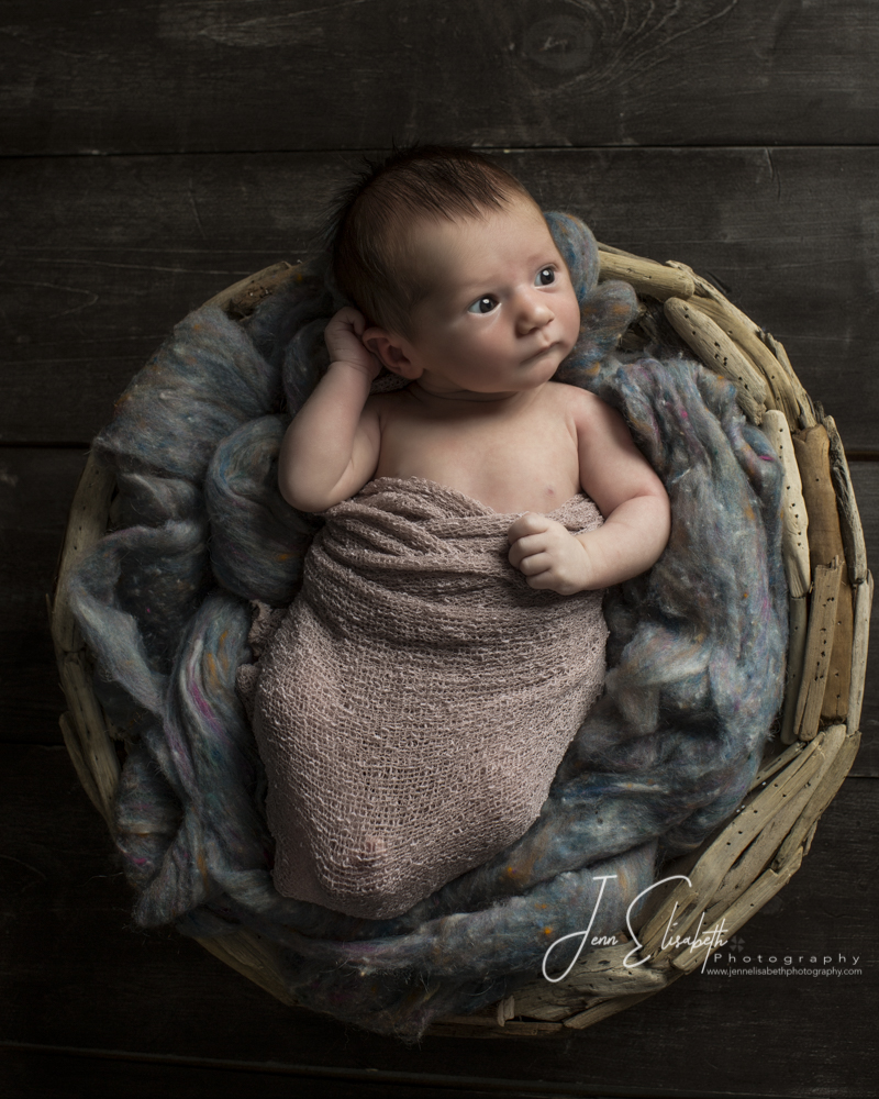jenn-elisabeth-photography-newborn-portraits-2