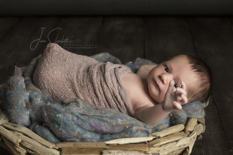jenn-elisabeth-photography-newborn-portraits