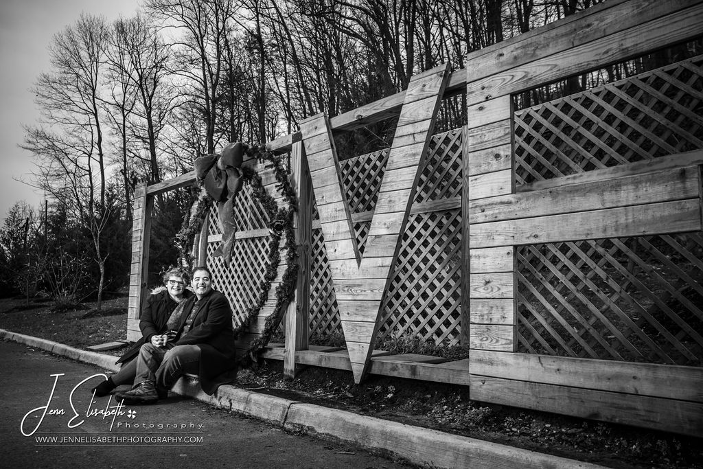 Northern Virginia Photographer for Weddings and Portraits